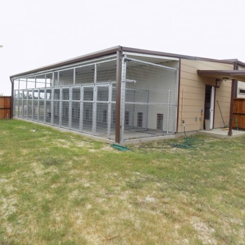 The outside area included in the kennels for dogs
